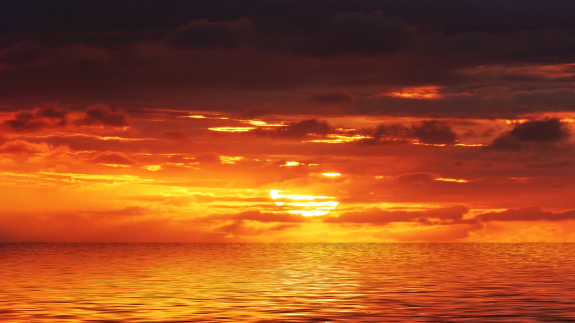 Download Orange Sunset 30005 1920x1080 Px High Resolution