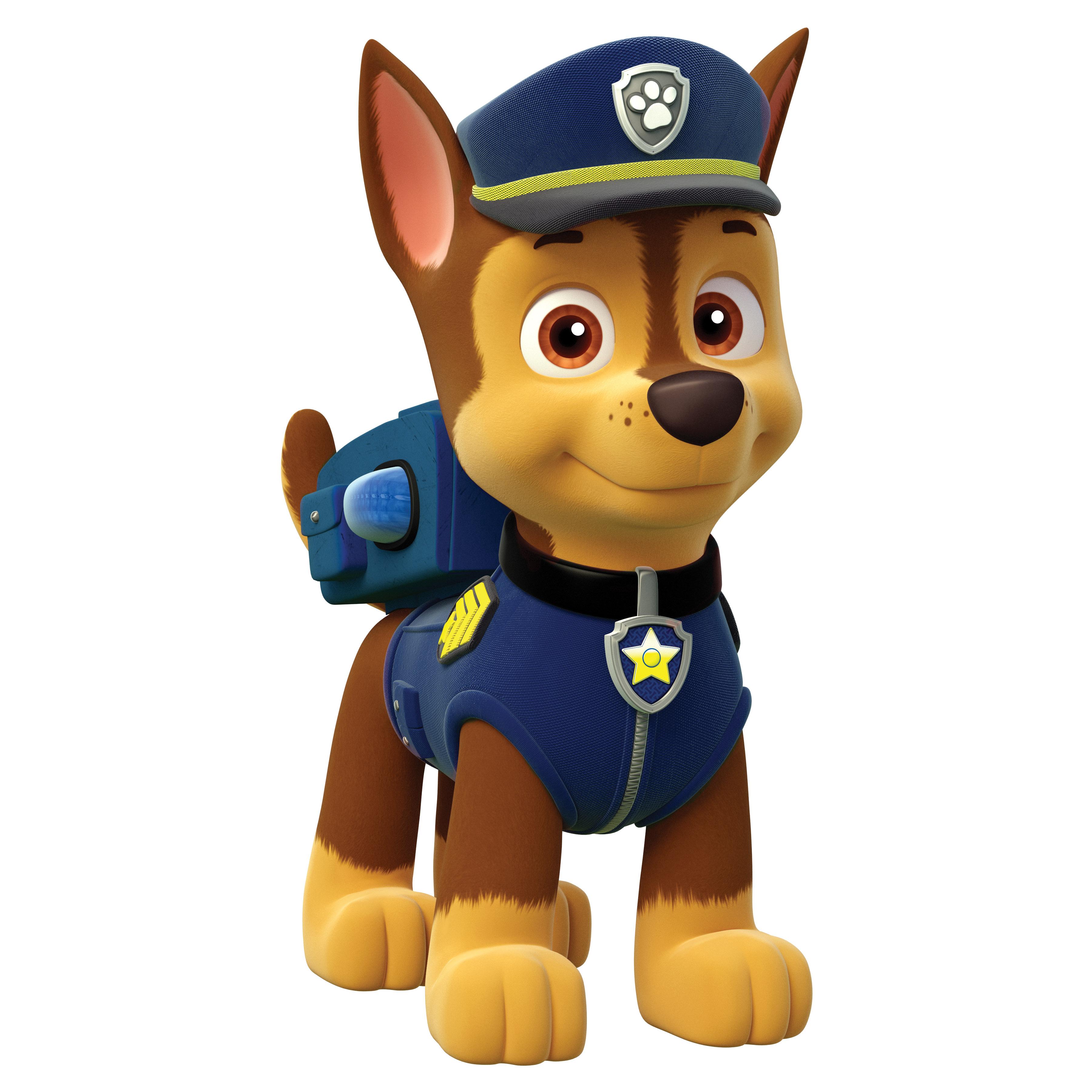 paw patrol 6029