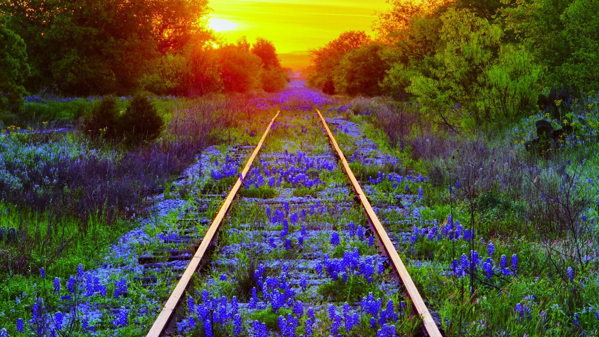 pretty train track wallpaper 37965