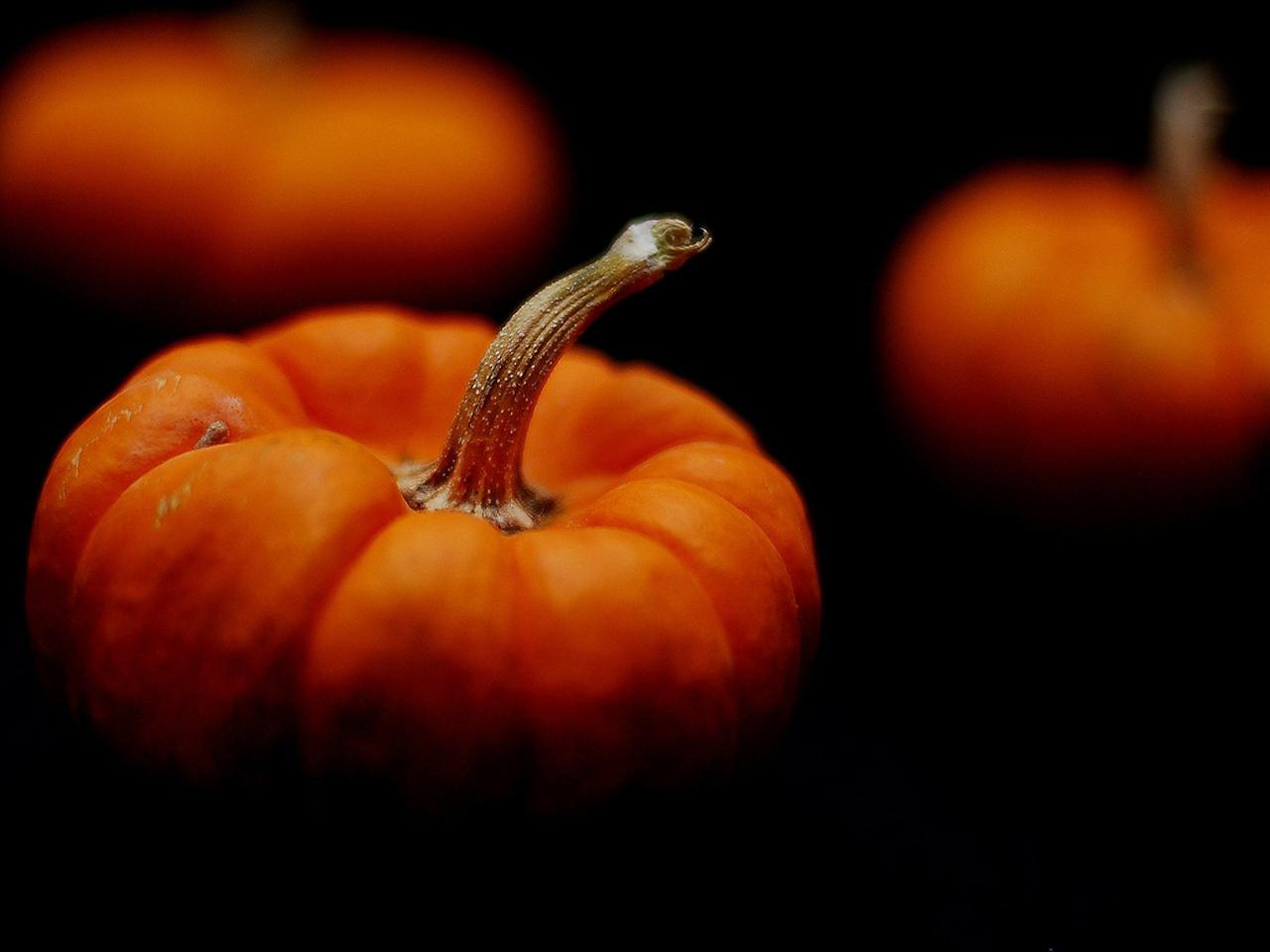 pumpkins 25772