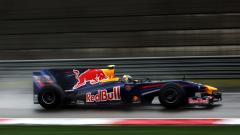 Awesome Red Bull Wallpaper 17887