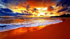 Beach Wallpaper 13032