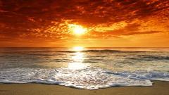 Beach Wallpaper 13043