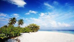 Beach Wallpaper 13054