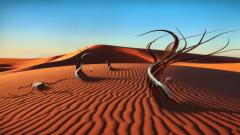 Beautiful Desert Wallpaper 16482