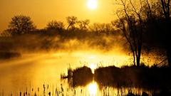Beautiful Lake Mist 33772