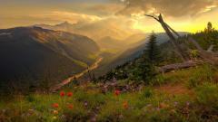 Beautiful Mountain Scenery 18741