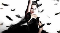 Black Swan Movie 9777