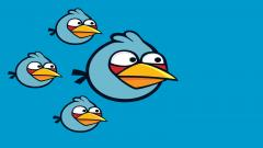 Blue Angry Bird Wallpaper 30406