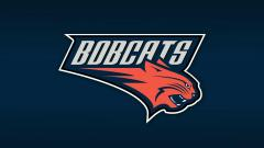 Bobcats Wallpaper 17925