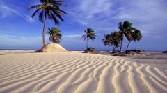 Brazil Beach Wallpaper 23203