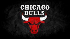 Bulls Wallpaper 17880