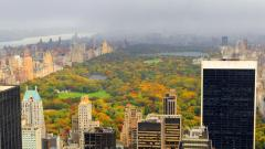Central Park NYC 22023