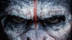 Dawn of the Planet of the Apes 33542