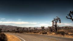 Desert Landscape Wallpaper 37477
