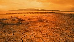Desert Wallpaper 16490