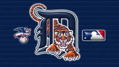 Detroit Tigers Wallpaper 13593