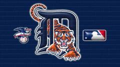 Detroit Tigers Wallpaper 13593