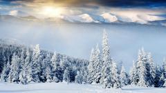 Fantastic Winter Scenery 18723