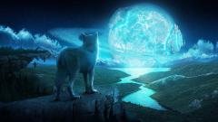 Fantasy Wolf Wallpaper 16319