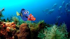 Finding Nemo 7742
