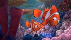 Finding Nemo 7743