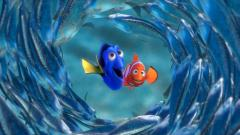 Finding Nemo 7744