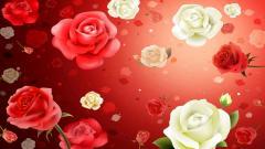 Flowers Wallpaper 5601