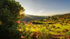 Free Tuscany Wallpaper 30316