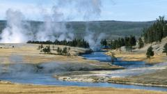 Free Yellowstone Wallpaper 28663