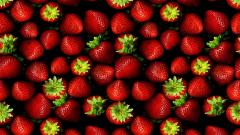 Fruit Wallpaper 20347