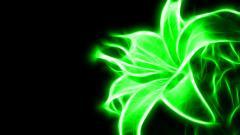 Green Flower 17357