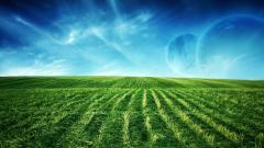 Green Landscape Background 21875