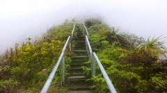 Haiku Stairs 8761