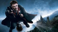 Harry Potter 9546