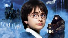 Harry Potter 9551
