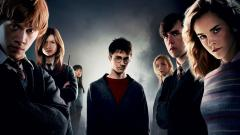 Harry Potter 9557