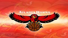 Hawks Wallpaper 17930