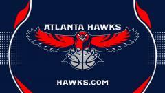 Hawks Wallpaper 17931