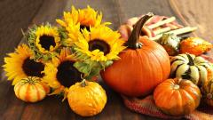 HD Pumpkin Wallpaper 25779
