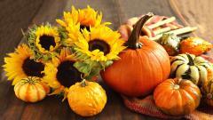 HD Pumpkin Wallpaper 25779