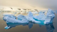 Icebergs 33553