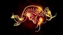 Koi Fish 7926