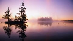 Lake Mist 33782