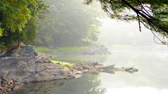 Lake Mist Wallpaper 33774