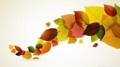 Leaves Background 20796