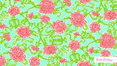 Lilly Pulitzer 12550
