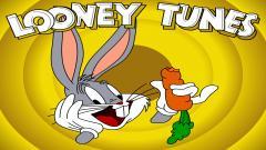 Looney Tunes 15261