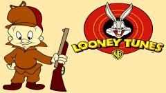 Looney Tunes 15266