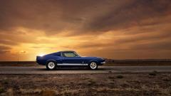 Muscle Car 14929